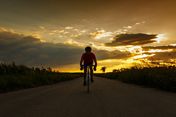 Silhouette of cyclist on road bike at sunset. Goes to camera.