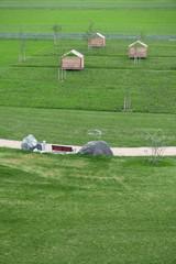 Wiese mit Holzhütten, Fußweg und Sitzbank