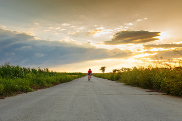 The cyclist in red blue form rides along fields of sunflowers. In the background sunset sky. Goes to camera.