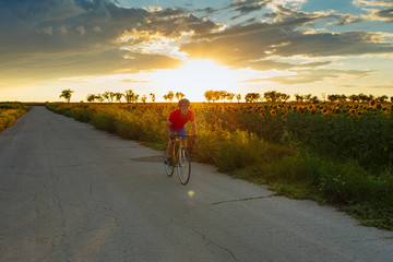 The cyclist in red blue form rides along fields of sunflowers. In background a beautiful blue sky.