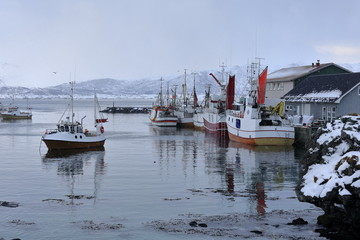 Fishing boats moored in the port-Eggum fishing village. Vestvagoya-Lofoten-Norway. 0563