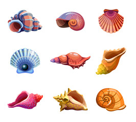 Colorful tropical set of sea shells. Underwater icons. Vector illustration