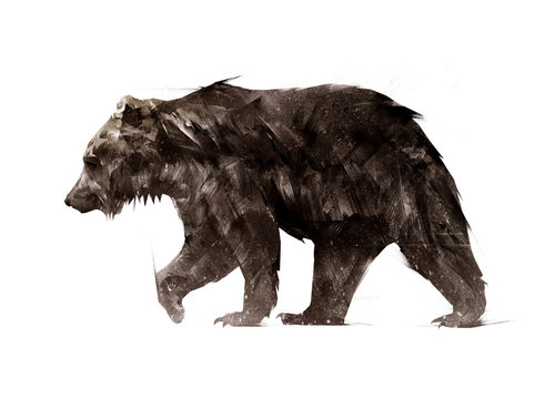 color painted a walking animal bear side