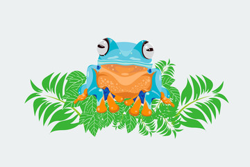 Wall Mural - Tree frog, Wallace tree frog