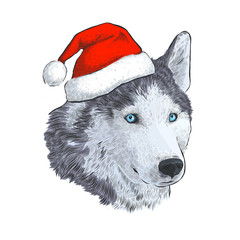 Husky in Santa hat. Portrait Engraving hand drawing isolated on white background. Dog - symbol of New Year 2018.