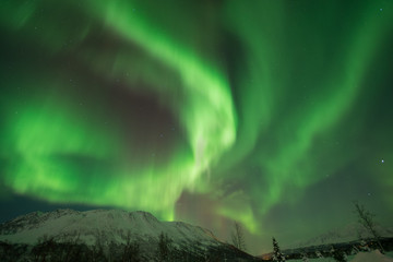 Dancing green northern lights in Tromso, Norway