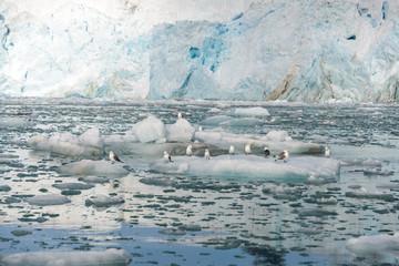 Poster Arctica Arctic landscape