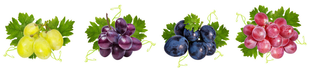 Wall Mural - Fresh grapes isolated on white background