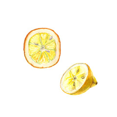 Watercolor illustration of cut lemon on white