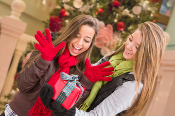 Mixed Race Young Adult Females Exchanging A Christmas Gift In Front Of Decorated Tree