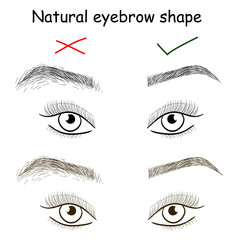 Natural eyebrow shape. Right and wrong brows