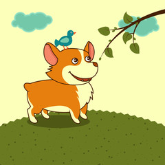 welsh corgi dog in the meadow in yellow sky cartoon character