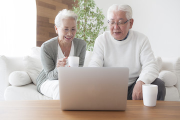 An elderly couple is making friends and practicing personal computers