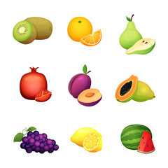Fruit set. Cartoon vector illustration of colorful design fresh farm harvest.
