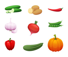 Cartoon illustration of healthy farm vegetables. Collection of elements for your design. Vector Icons for signage, menus, banners and sections