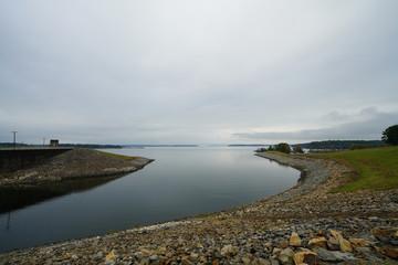 Freshwater Lake Ecosystem