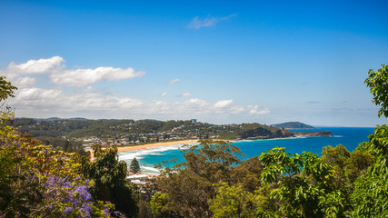Avoca Beach -View from above in between trees on a beautiful sunny day on the Central Coast, NSW, Australia.