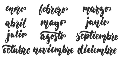 Los meses - months in spanish, hand drawn latin lettering quote isolated on the white background. Fun brush ink inscription for greeting card or poster design.