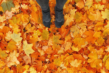 Feet of woman standing on fallen autumn leaves in park