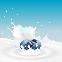 Milk splash with blueberry