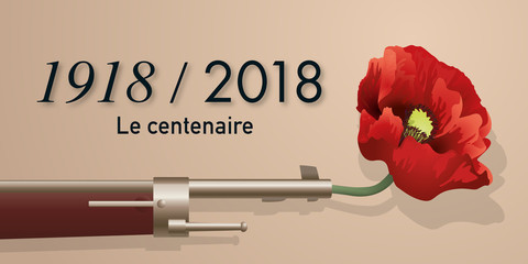 guerre mondiale - grande guerre - centenaire - guerre 14-18 - fusil - armistice - coquelicot