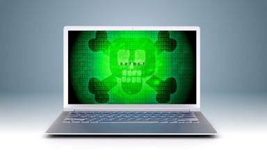 botnet computer crime