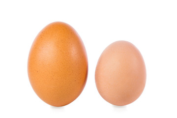 zwei hühnereier, eines von einer jungen henne