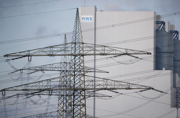 Power poles stand in front of the new coal power plant of RWE, one of Europe's biggest electricity companies in Neurath