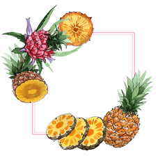 Exotic pineapple healthy food frame in a watercolor style. Full name of the fruit: pineapple. Aquarelle wild fruit for background, texture, wrapper pattern or menu.