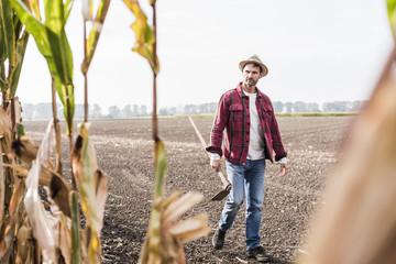 Farmer walking along cornfield Fotoväggar