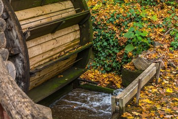 Aluminium Prints Mills Old wooden water mill in the forest at autumn