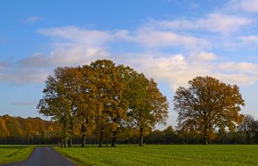 Typisch Münsterland