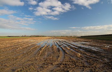 Water and mud on farm field after harvest with blue sky and white clouds in Zevenhuizen Netherlands.