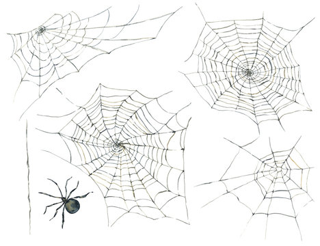 Halloween seamless pattern with black spider and web