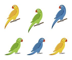 Set of colorful parrots