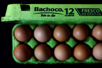 A box and eggs from Bachoco, a poultry producer, are pictured in this picture illustration in Mexico City