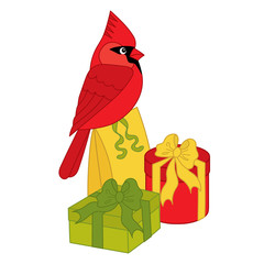 Vector Cardinal Sitting on the Gift Boxes
