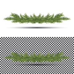 Fir Branch Isolated on White Background.