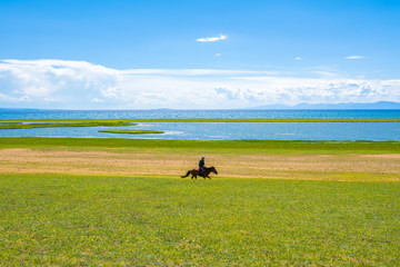 A horse rider on the shore of a large lake
