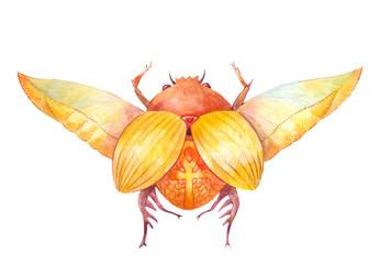 Scarab beetle. Egyptian symbol of the sun.