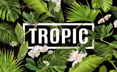 Tropic horizontal banner