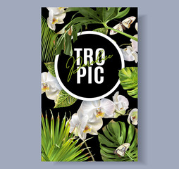 Tropic orchid banner