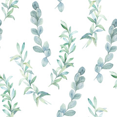 Watercolor seamless pattern witn eucalyptus branch. Hand drawn illustration. Floral background