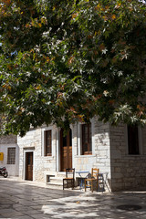 Naxos - Apeiranthos village, plane tree and white marble paved  - Cyclades Greece
