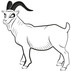 Picture of a goat's silhouette with horns