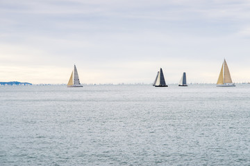sailing yachts competition