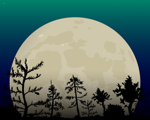 Romantic white moon in the night sky. Dark forest.