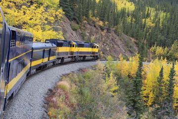 Herbst in Alaska-Zugfahrt