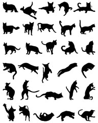 Black silhouettes  of cats on white background