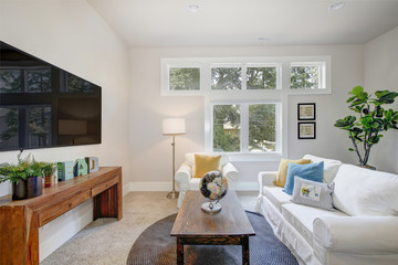 Nice family room with pure white sofas